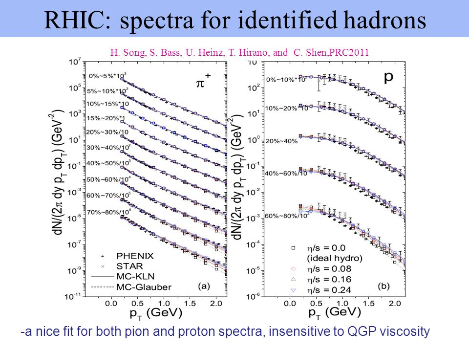 RHIC: spectra for identified hadrons