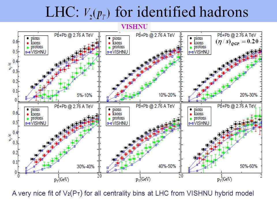 LHC: for identified hadrons