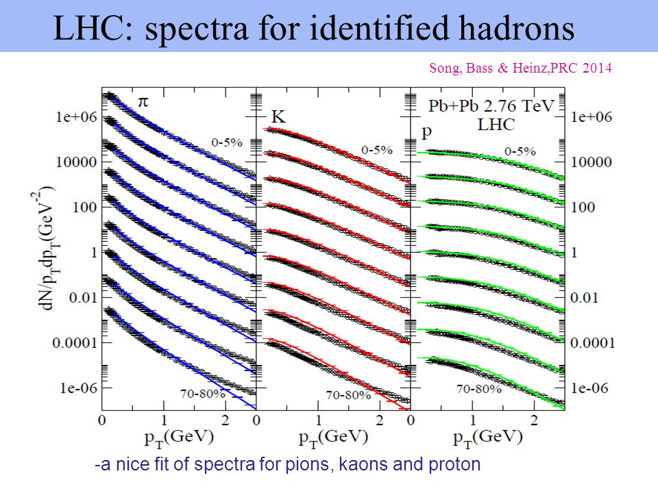 LHC: spectra for identified hadrons