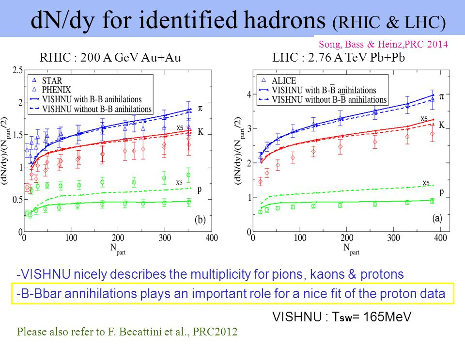 dN/dy for identified hadrons (RHIC & LHC)