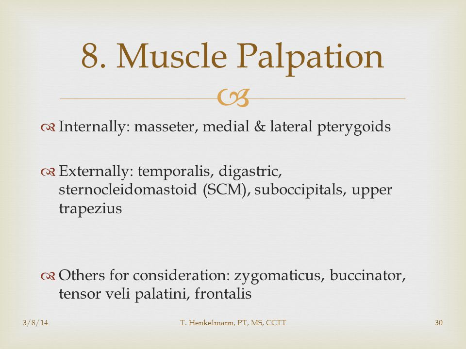 8. Muscle Palpation Internally: masseter, medial & lateral pterygoids