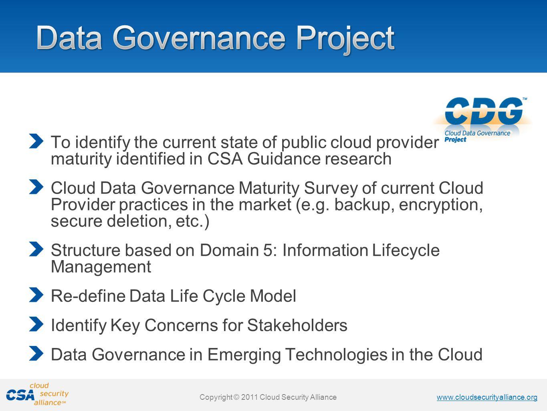 Data Governance Project