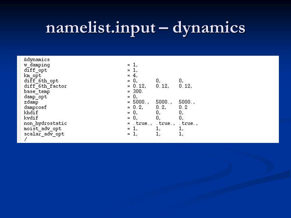 namelist.input – dynamics