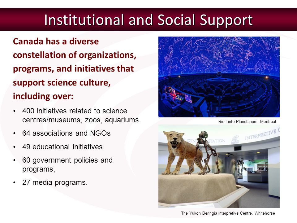 Institutional and Social Support