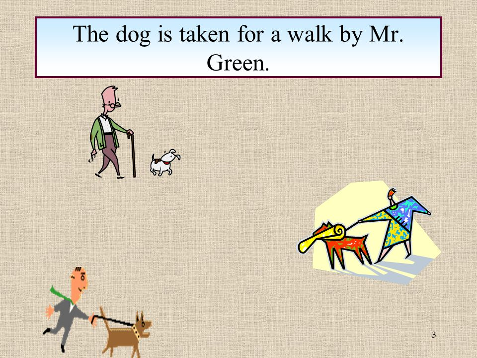 The dog is taken for a walk by Mr. Green.