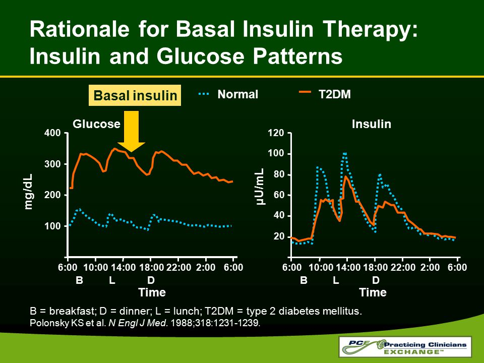 Rationale for Basal Insulin Therapy: Insulin and Glucose Patterns