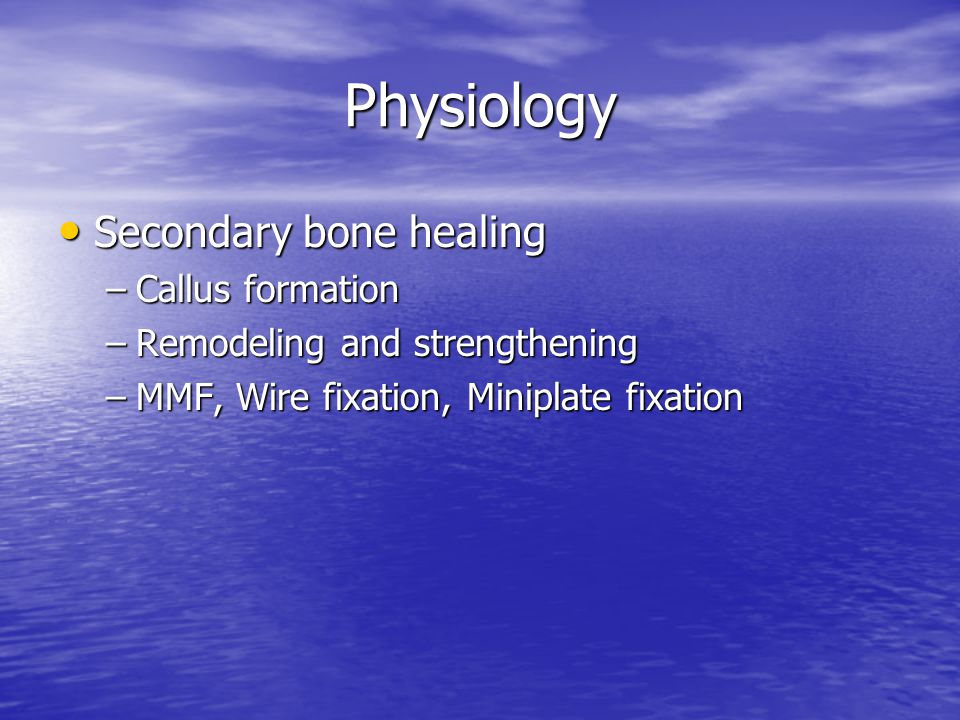 Physiology Secondary bone healing Callus formation