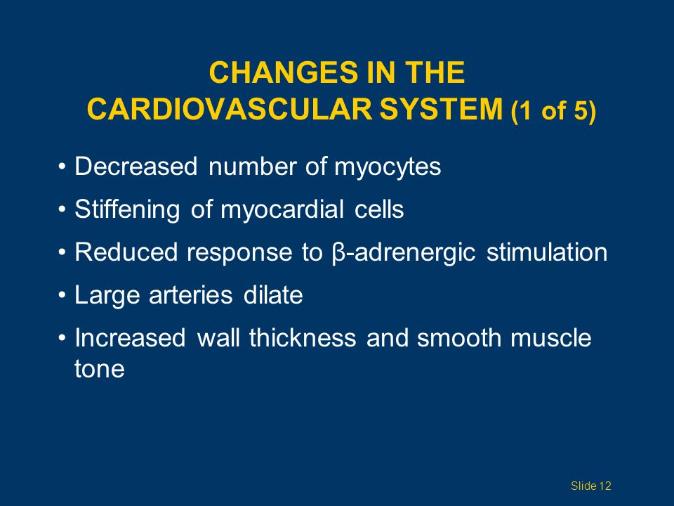 Changes in the Cardiovascular System (1 of 5)