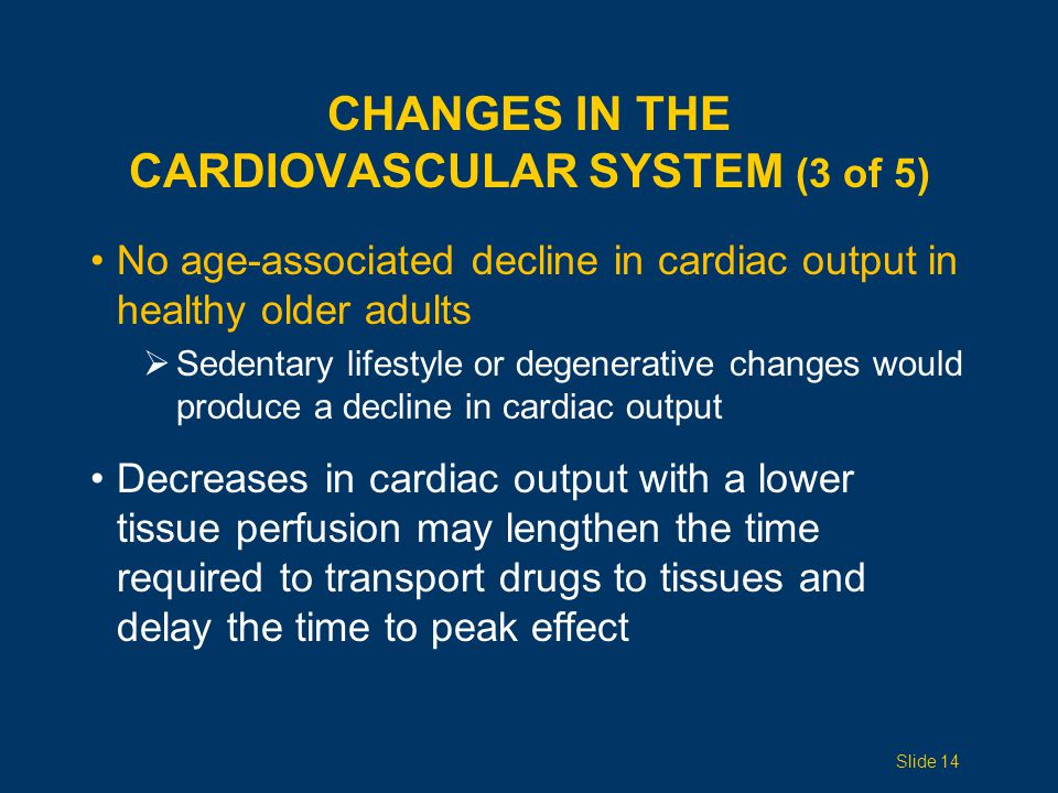 Changes in the Cardiovascular System (3 of 5)