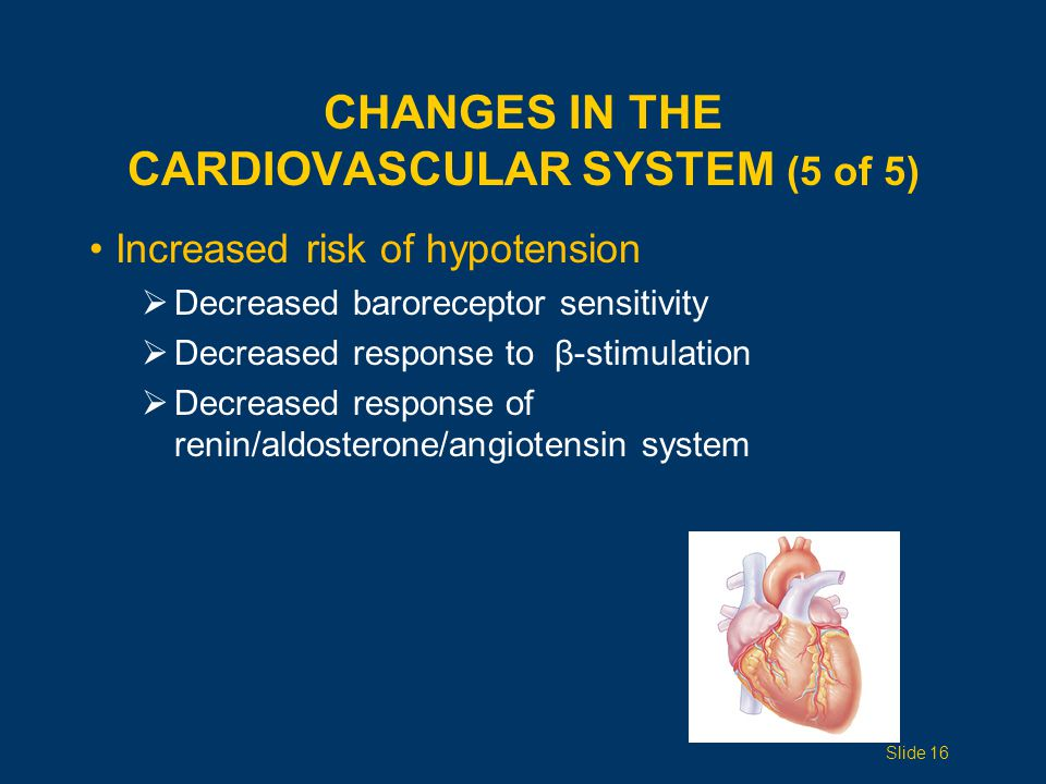 Changes in the Cardiovascular System (5 of 5)