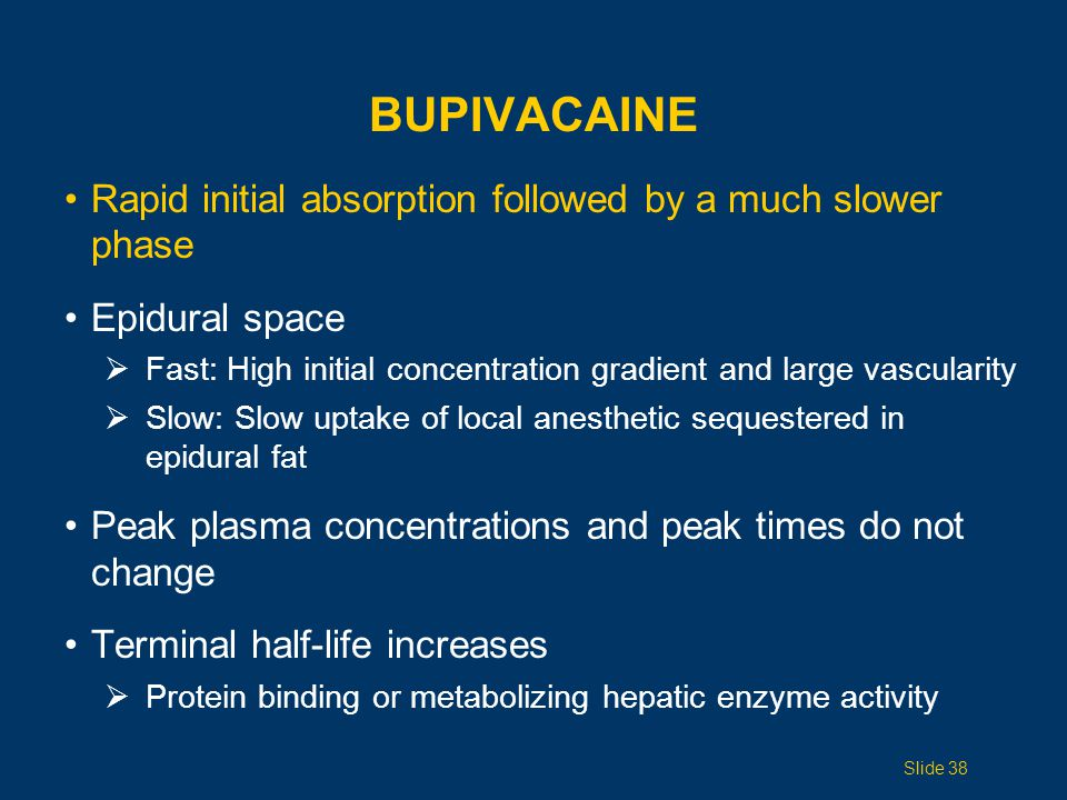 Bupivacaine Rapid initial absorption followed by a much slower phase