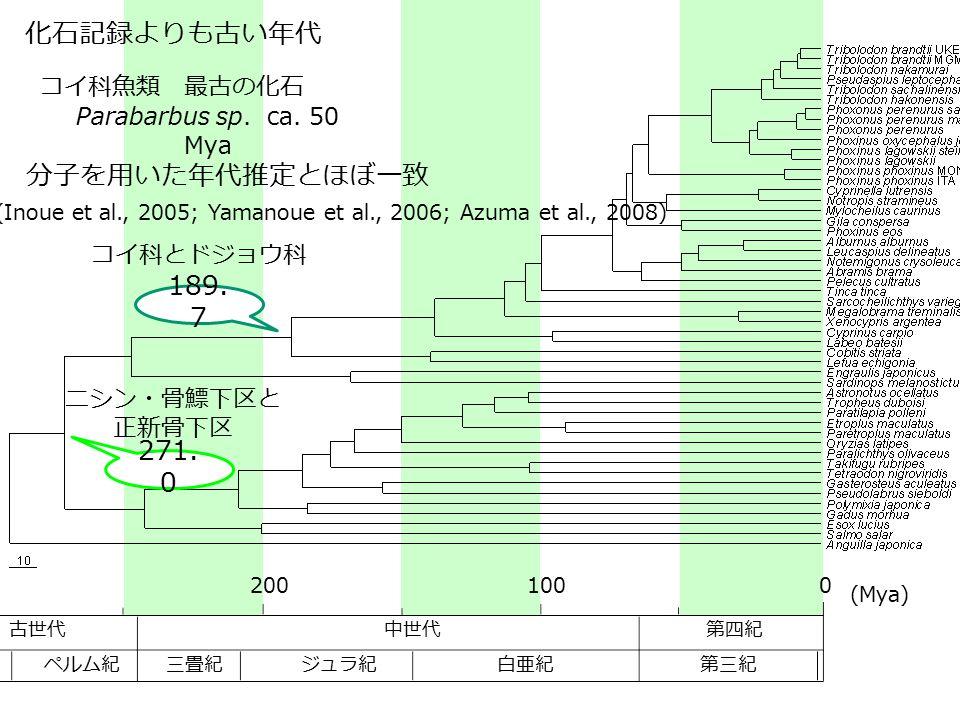 (Inoue et al., 2005; Yamanoue et al., 2006; Azuma et al., 2008)