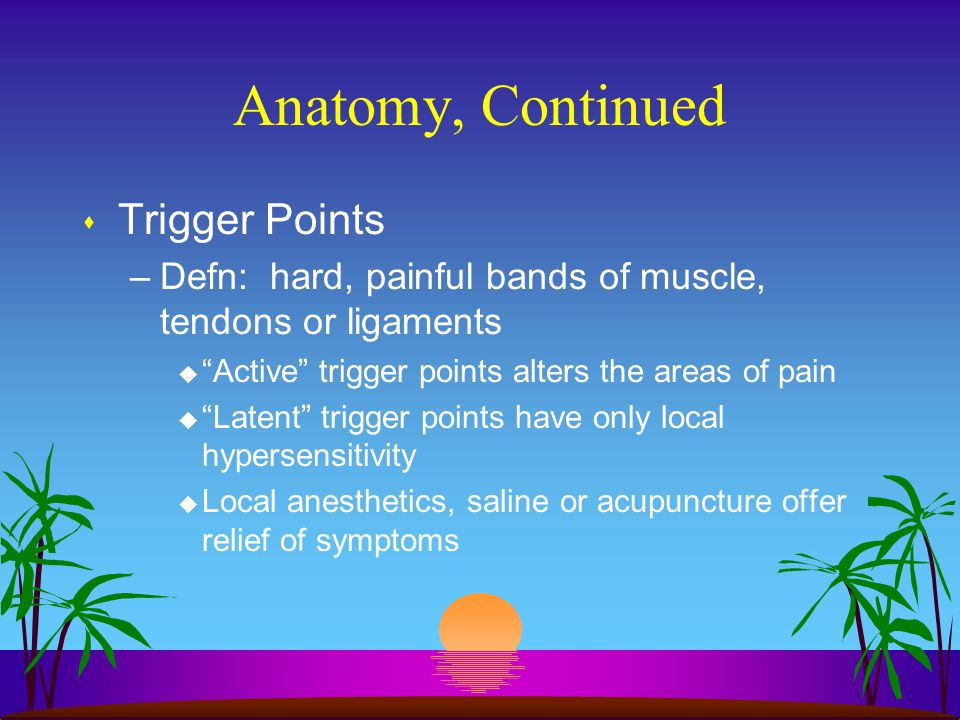 Anatomy, Continued Trigger Points