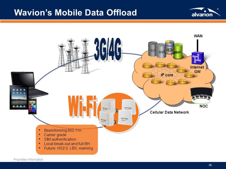 Wavion's Mobile Data Offload