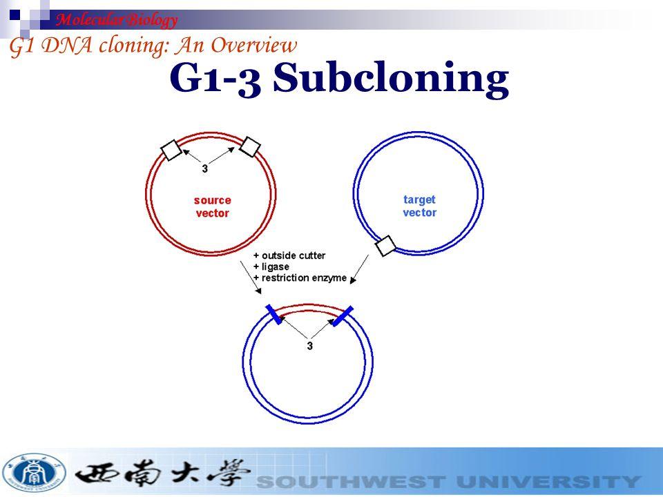 Molecular Biology G1 DNA cloning: An Overview G1-3 Subcloning