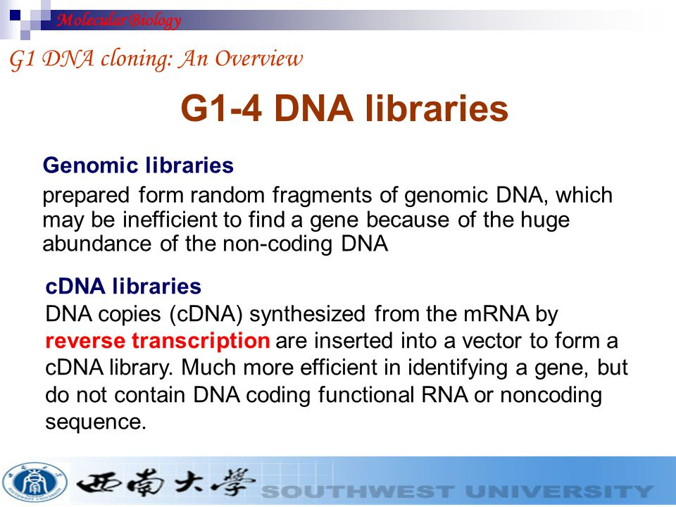 G1-4 DNA libraries G1 DNA cloning: An Overview Genomic libraries