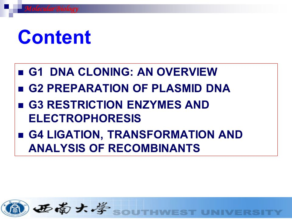 Content G1 DNA CLONING: AN OVERVIEW G2 PREPARATION OF PLASMID DNA