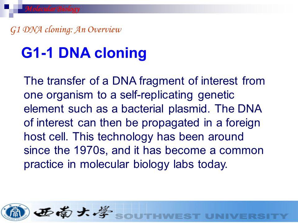 Molecular Biology G1 DNA cloning: An Overview. G1-1 DNA cloning.