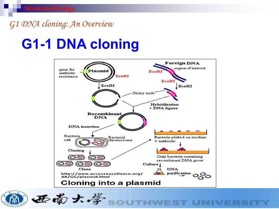 Molecular Biology G1 DNA cloning: An Overview G1-1 DNA cloning