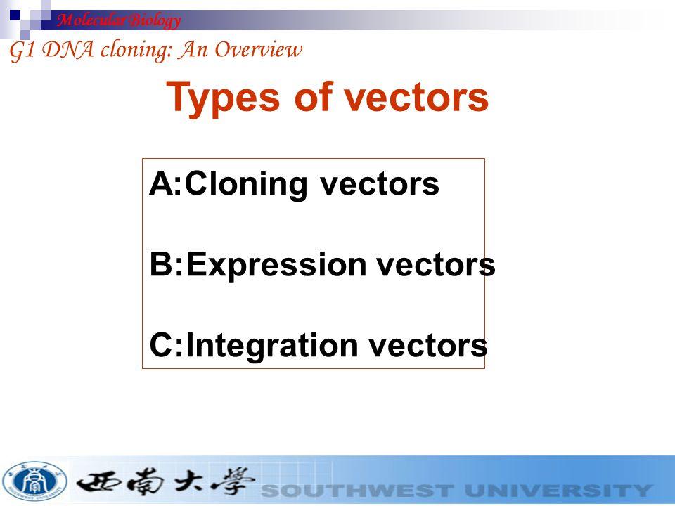 Types of vectors A:Cloning vectors B:Expression vectors