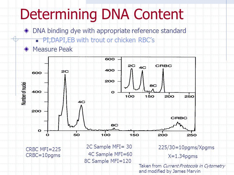 Determining DNA Content