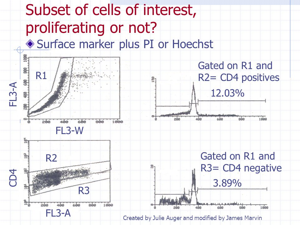 Subset of cells of interest, proliferating or not