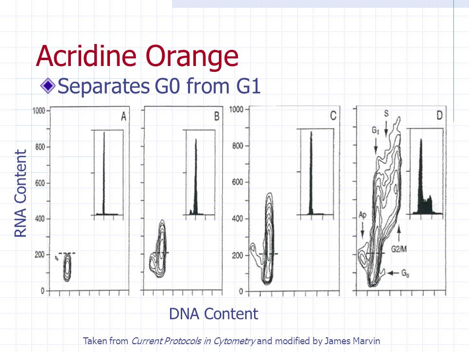 Acridine Orange Separates G0 from G1 RNA Content DNA Content