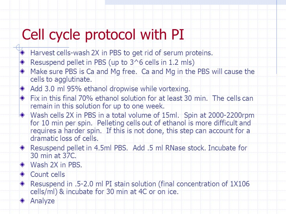 Cell cycle protocol with PI