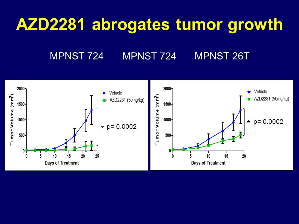 AZD2281 abrogates tumor growth