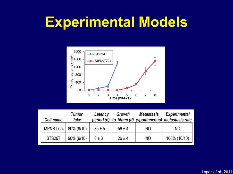 Experimental Models Time (weeks) Tumor volume (mm3) Lopez et al., 2011