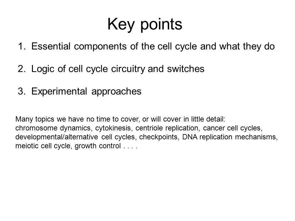Key points 1. Essential components of the cell cycle and what they do