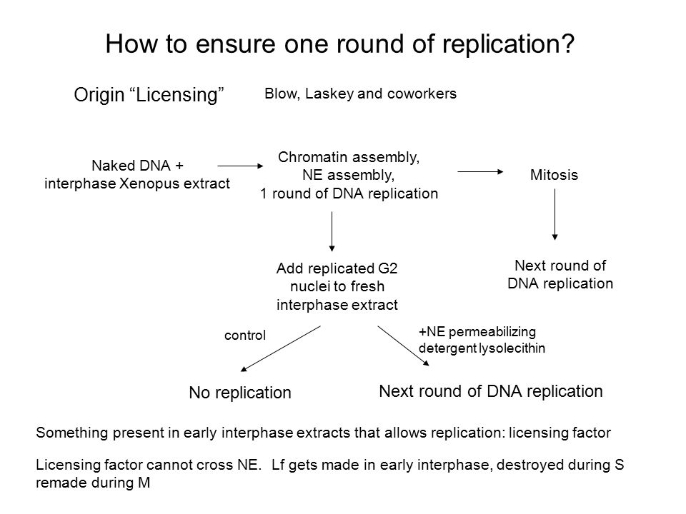 How to ensure one round of replication
