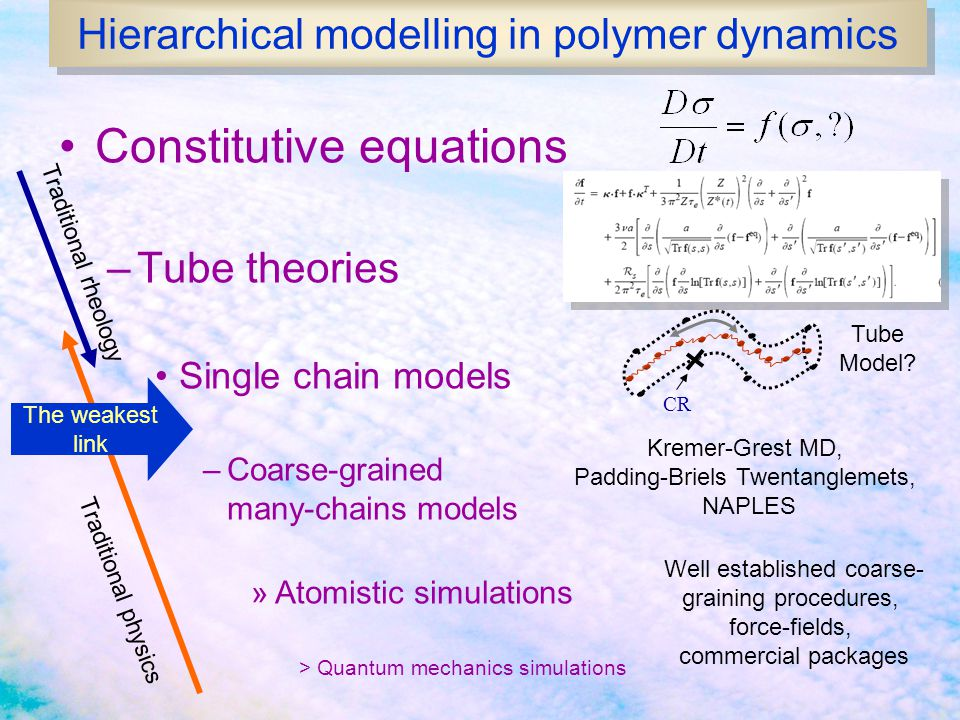 Hierarchical modelling in polymer dynamics