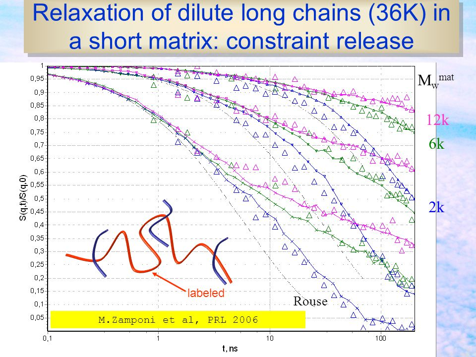 Relaxation of dilute long chains (36K) in a short matrix: constraint release
