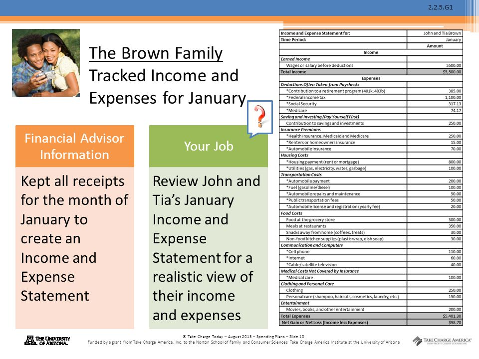 The Brown Family Tracked Income and Expenses for January