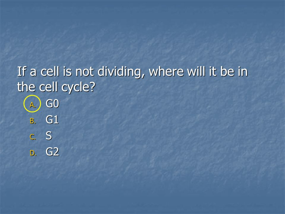 If a cell is not dividing, where will it be in the cell cycle