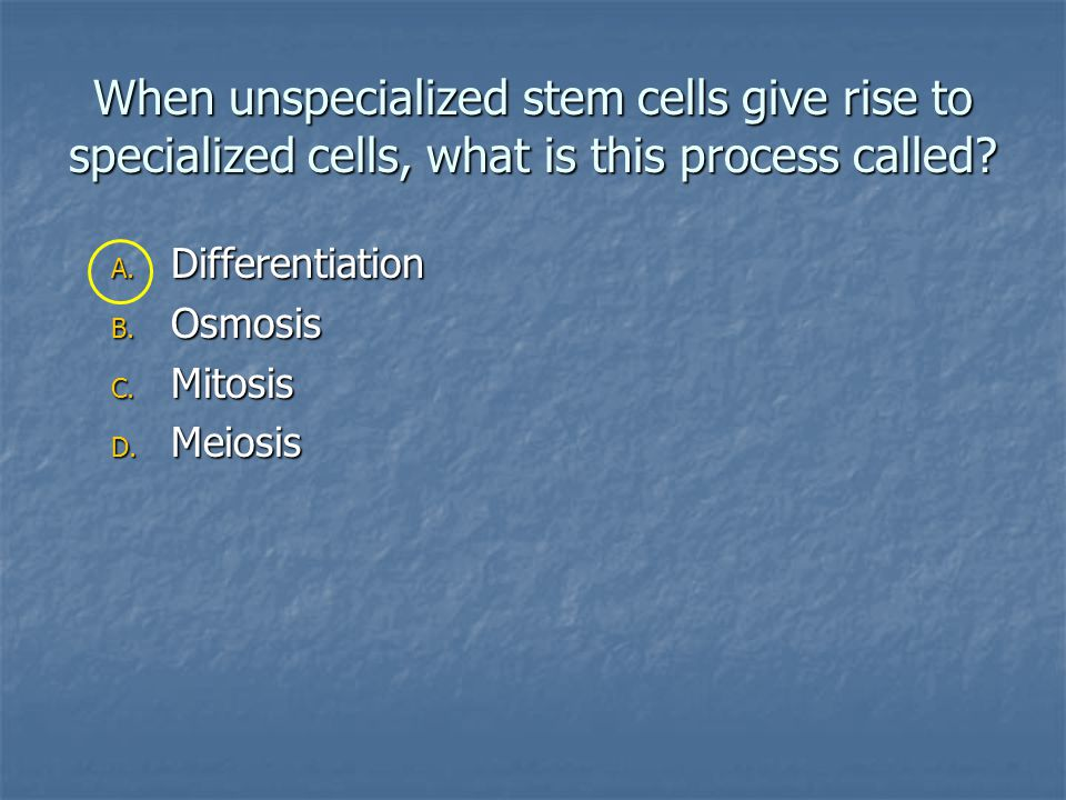 When unspecialized stem cells give rise to specialized cells, what is this process called