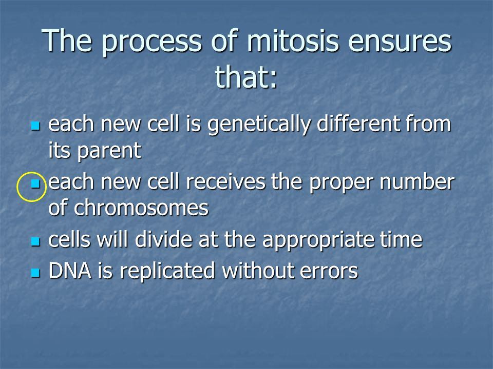 The process of mitosis ensures that: