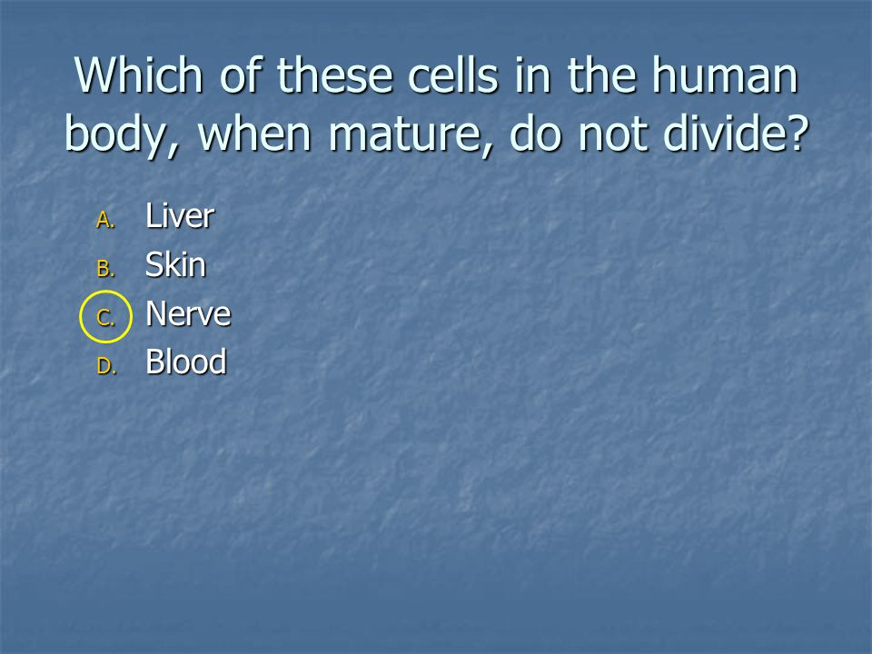 Which of these cells in the human body, when mature, do not divide