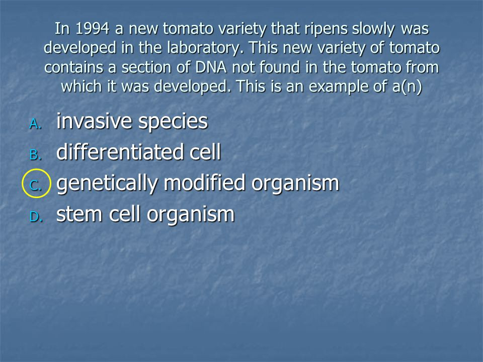 genetically modified organism stem cell organism