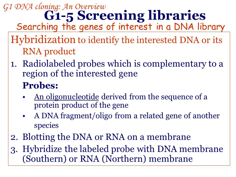 G1-5 Screening libraries