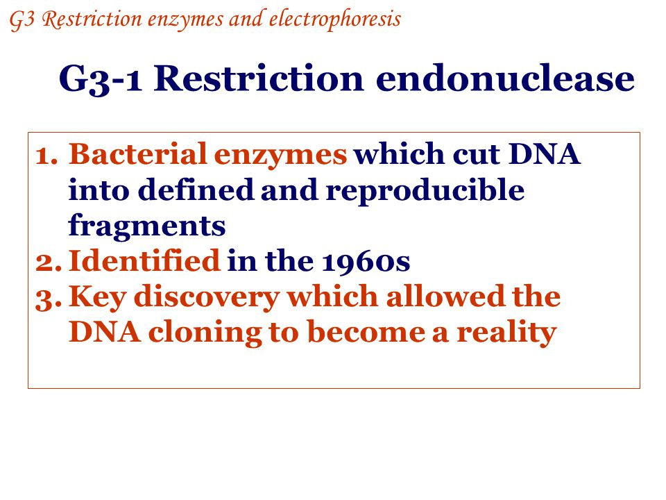 G3-1 Restriction endonuclease