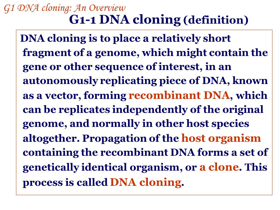 G1-1 DNA cloning (definition)