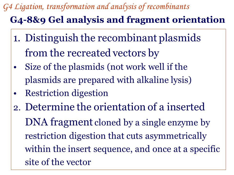 Distinguish the recombinant plasmids from the recreated vectors by