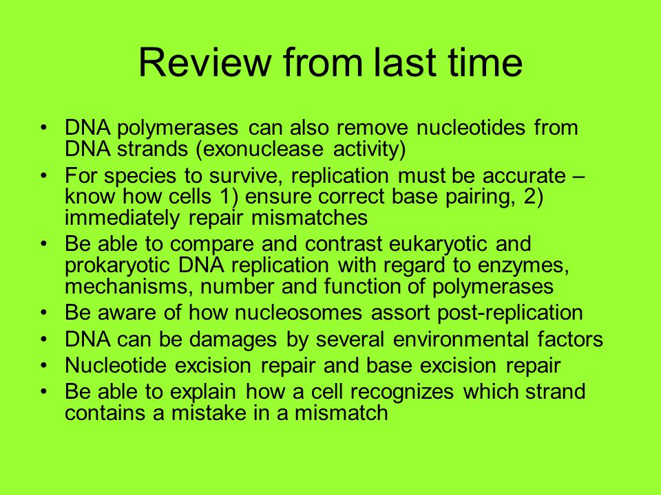 Review from last time DNA polymerases can also remove nucleotides from DNA strands (exonuclease activity)