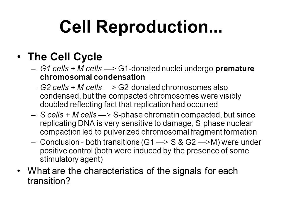 Cell Reproduction... The Cell Cycle