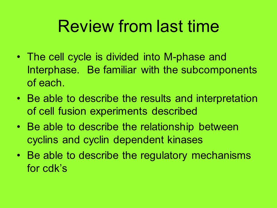 Review from last time The cell cycle is divided into M-phase and Interphase. Be familiar with the subcomponents of each.
