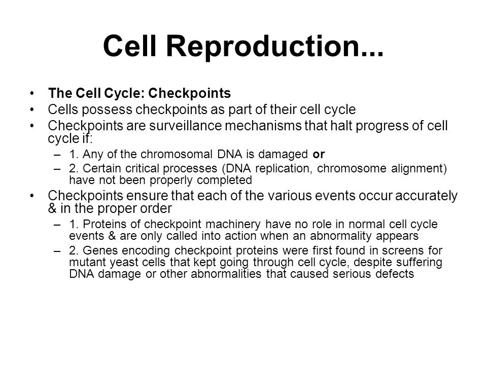 Cell Reproduction... The Cell Cycle: Checkpoints