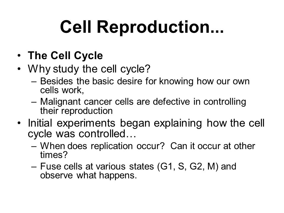 Cell Reproduction... The Cell Cycle Why study the cell cycle