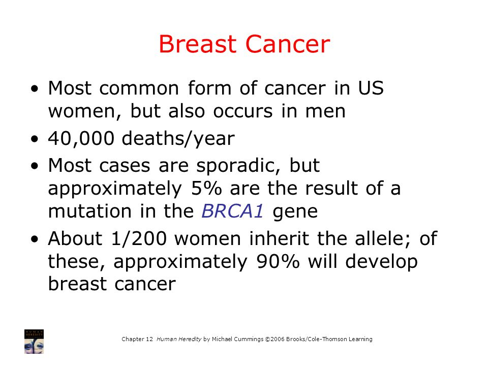 Breast Cancer Most common form of cancer in US women, but also occurs in men. 40,000 deaths/year.
